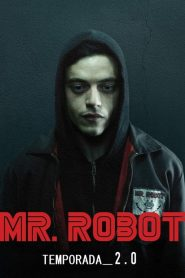 Mr. Robot: 2 Temporada