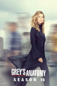 Grey's Anatomy: 16 Temporada