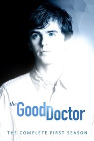 The Good Doctor: O Bom Doutor: 1 Temporada