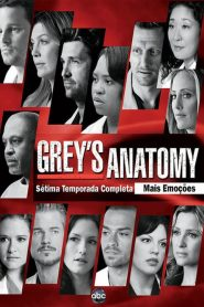 Grey's Anatomy: 7 Temporada