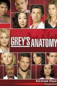 Grey's Anatomy: 4 Temporada